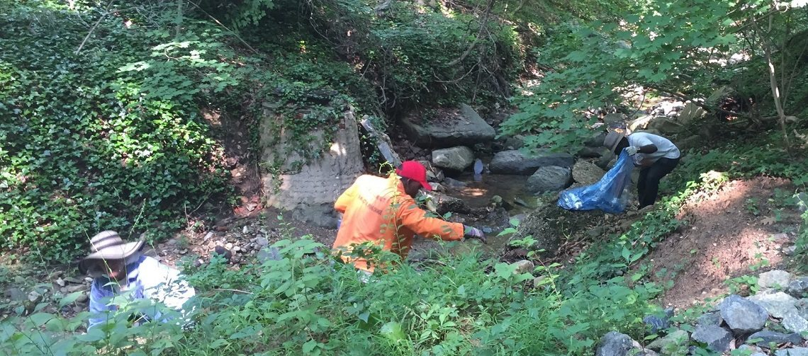 Volunteers remove trash and plastics from a creek